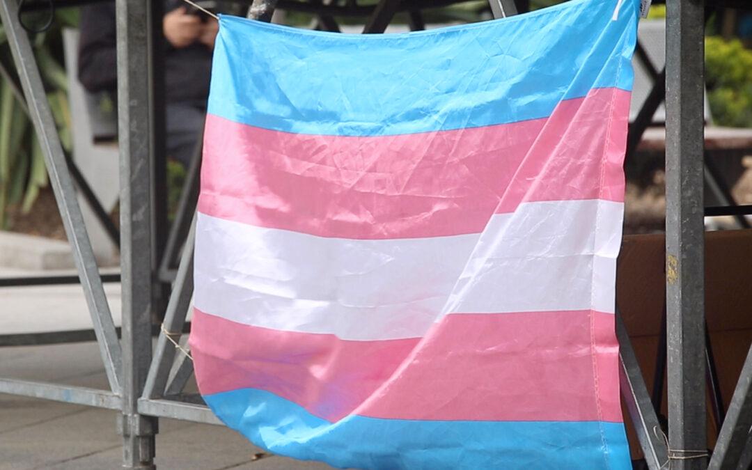 Municipalisme Trans*